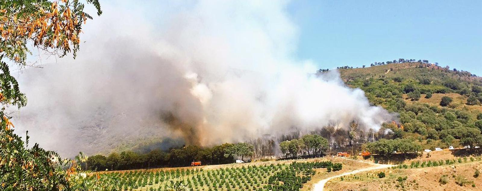 Pas de r pit pour les incendiaires ville de lucciana for Airess incendie