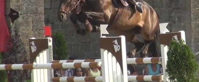concours-de-saut-d-obstacles_evenement_large