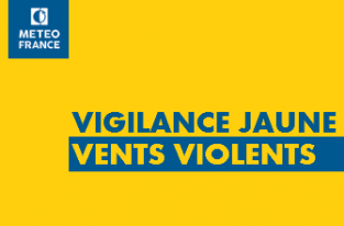 Le-departement-en-vigilance-jaune-vent-violent_large