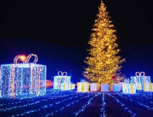 4ème concours d'illuminations de Noël